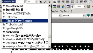 Capture d'écran montrant où changer la police dans le logiciel de traitement de texte